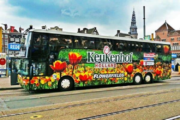 Đến Keukenhof như thế nào? Hướng dẫn di chuyển tới vườn hoaKeukenhof. Du lịch Keukenhof ngắm hoa tulip: Địa chỉ, thời điểm, giá vé. Hướng dẫn tham quan Keukenhof, Hà Lan ngắm lễ hội hoa tulip đẹp
