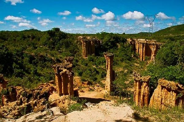 Hướng dẫn tour du lịch Tanzania giá rẻ: Kinh nghiệm du lịch Tanzania an toàn, thuận lợi