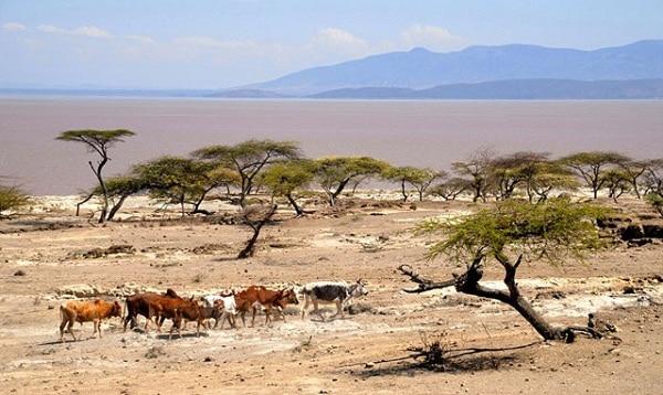 Kinh nghiệm du lịch Ethiopia điểm đến được kỳ vọng. Cẩm nang, hướng dẫn du lịch Ethiopia cụ thể, đường đi, giá vé máy bay, ăn ở...