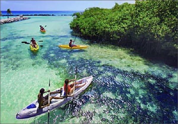 Kinh nghiệm du lịch Aruba ngắm hồng hạc giá rẻ, siêu hấp dẫn