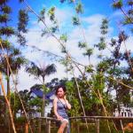 Kinh nghiệm đi Vườn Vua Resort, Phú Thọ giá phòng, đường đi. Hướng dẫn du lịch Vườn Vua Resort, Phú Thọ cụ thể, chi tiết, tự túc.