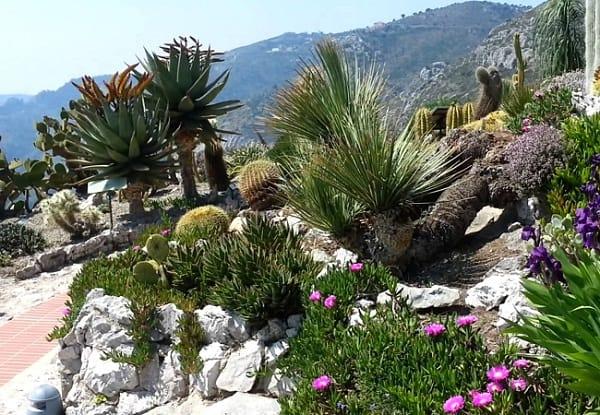 Điểm du lịch nổi tiếng nhất ở Monaco đẹp nên tới. Danh lam thắng cảnh đẹp ở Monaco: Địa điểm chụp ảnh, ngắm cảnh đẹp nhất Monaco