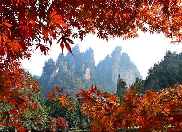 Địa điểm du lịch nổi tiếng, đẹp nhất ở Trung Quốc mùa thu: Nên đi chơi ở đâu khi du lịch Trung Quốc mùa thu?