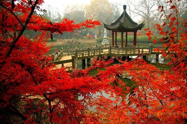 Du lịch Trung Quốc mùa thu nên đi tham quan ở đâu? Địa điểm tham quan, vui chơi, ngắm cảnh, chụp ảnh đẹp ở Trung Quốc trong mùa thu