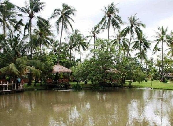 Câu cá ở đâu Hà Nội? Những hồ câu cá quanh Hà Nội kèm giá thành. Nên đi câu ở đâu quanh Hà Nội nhiều cá, giá rẻ? Địa chỉ câu cá nổi tiếng ở Hà Nội.