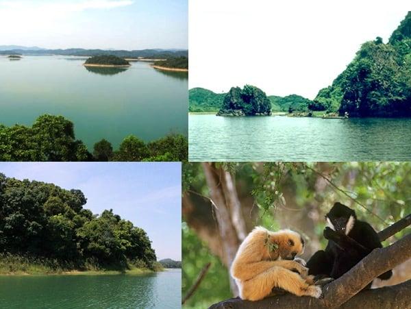 Kinh nghiệm du lịch vườn quốc gia Bến En, Thanh Hóa cực đẹp. Hướng dẫn phượt vườn quốc gia Bến En đường đi, lộ trình, ăn ở...