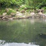 Địa chỉ các khu du lịch suối khoáng nóng nổi tiếng ở Việt Nam hiện nay: Danh sách địa chỉ, giá vé, điện thoại của các khu suối nước nóng trên cả nước