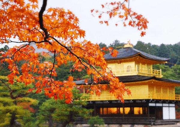 Địa điểm du lịch nổi tiếng ở Nhật Bản vào mùa thu: Mùa thu đi du lịch ở đâu Nhật Bản?