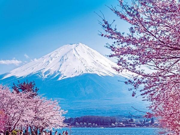 Địa diểm tham quan, du lịch Nhật Bản trong mùa xuân: Du lịch Nhật Bản mùa xuân chơi đâu?