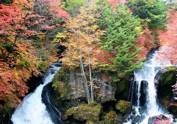 Du lịch Nhật Bản mùa thu nên đi đau chơi, tham quan? Danh lam thắng cảnh đẹp vào mùa thu ở Nhật Bản