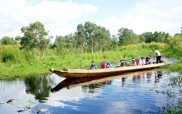 Hoạt động tham quan, vui chơi ở vườn quốc gia U Minh Hạ: Kinh nghiệm đi du lịch rừng U Minh Hạ tự túc, giá rẻ