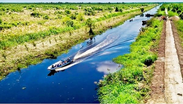 Hướng dẫn đi tham quan, vui chơi ở rừng quốc gia U Minh Hạ, Cà Mau: Du lịch rừng U Minh Hạ chơi gì vui, ăn gì ngon?