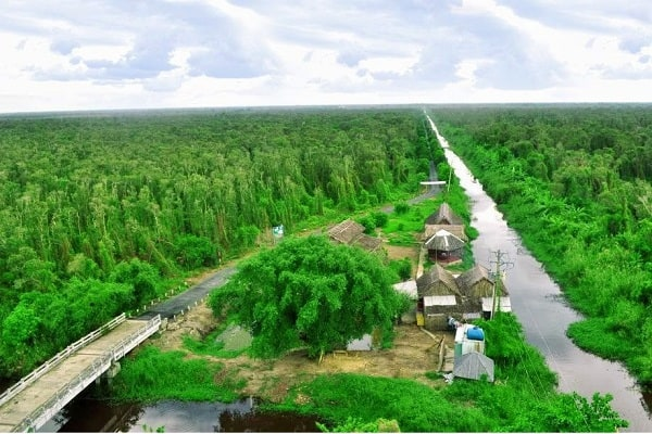Kết quả hình ảnh cho Rừng quốc gia U Minh hạ