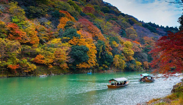Nên đi chơi đâu khi du lịch Nhật Bản vào mùa thu? Du lịch Nhật Bản mùa thu chơi gì vui?