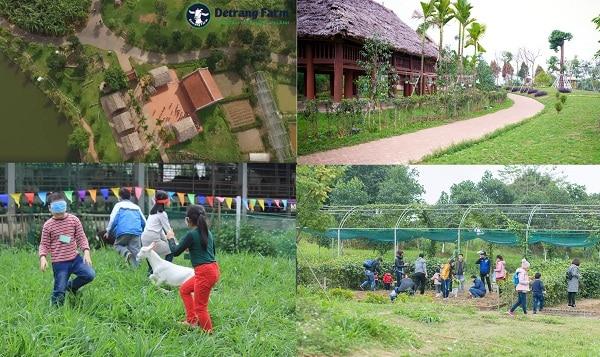 Địa chỉ những nông trại giáo dục đẹp và nổi tiếng ở Hà Nội: Hà Nội có trang trại giáo dục nào?