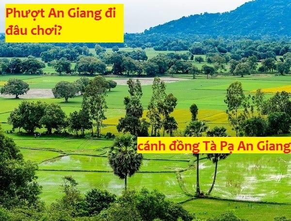 Địa điểm check in, ngắm cảnh đẹp ở An Giang: Danh lam thắng cảnh đẹp ở An Giang