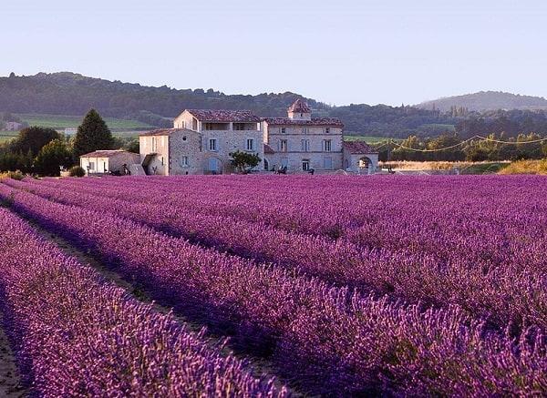 Du lịch Pháp mùa nào đẹp nhất? thời tiết tốt, thích hợp. Nên đi du lịch Pháp vào thời gian nào trong năm? Du lịch Pháp tháng mấy?