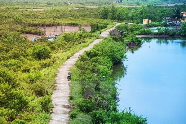 Kinh nghiệm du lịch vườn quốc gia Xuân Thủy từ A tới Z