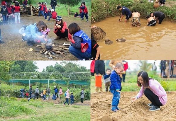 Hoạt động tham quan, vui chơi giải trí được yêu thích ở Detrang Farm Ba Vì: Kinh nghiệm đi dã ngoại ở nông trại giáo dục Dê Trắng