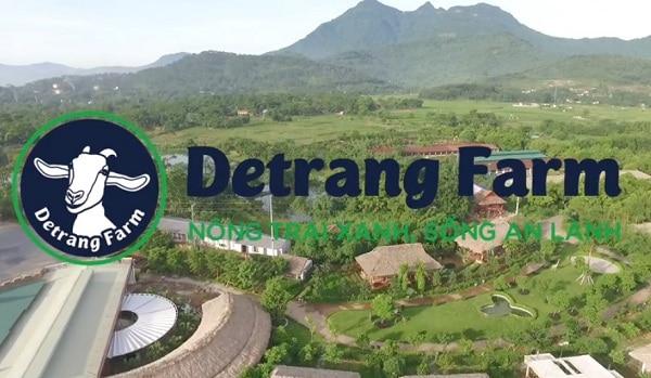 Kinh nghiệm đi tham quan, vui chơi, dã ngoại ở Detrang Farm Ba Vì Hà Nội: Hướng dẫn đi du lịch nông trại Dê Trắng tự túc, giá rẻ