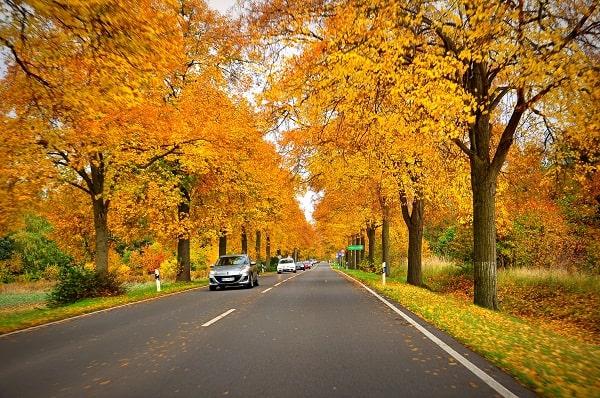 Du lịch Đức mùa nào đẹp nhất? Nên đi du lịch Đức mùa nào, tháng mấy?