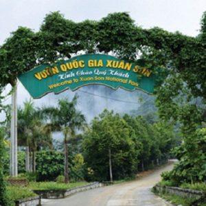 Kinh nghiệm phượt rừng quốc gia Xuân Sơn kèm lộ trình 1 ngày. Hướng dẫn, cẩm nang du lịch vườn quốc gia Xuân Sơn thời điểm đẹp.