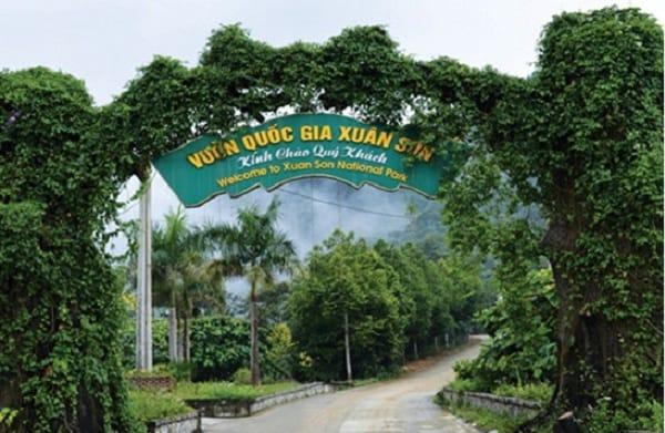 Kinh nghiệm phượt rừng quốc gia Xuân Sơn kèm lộ trình 1 ngày. Hướng dẫn, cẩm nang du lịch vườn quốc gia Xuân Sơn chi tiết
