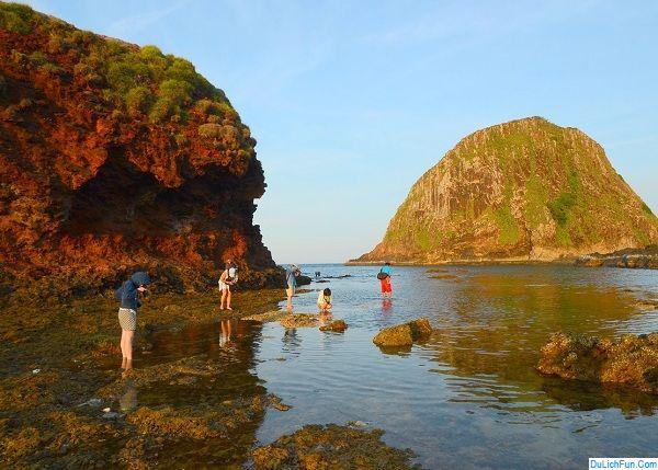 Du lịch Phú Yên nên đi đâu chơi, tham quan? Địa điểm du lịch đẹp, nổi tiếng ở Phú Yên