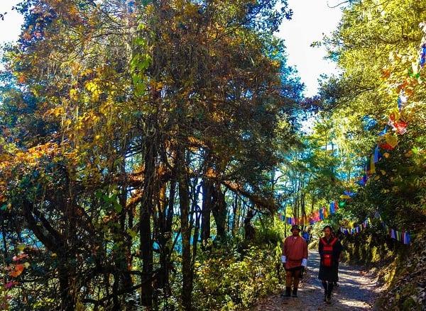 Du lịch Bhutan vào thời điểm nào đẹp nhất? khí hậu&cảnh quan. Nên đi du lịch Bhutan vào mùa nào, tháng mấy trong năm? cảnh đẹp, thuận lợi...