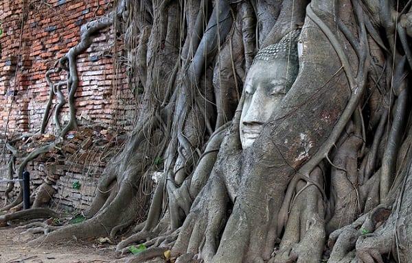 Kinh nghiệm du lịch Ayutthaya tự túc, tiết kiệm hoài cổ. Hướng dẫn, cẩm nang du lịch Ayutthaya cụ thể đường đi, ăn ở, cảnh đẹp.