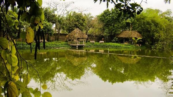 Trải nghiệm khu du lịch sinh thái Vườn Xoài, Nam Hồng. Hướng dẫn đi khu du lịch Vườn Xoài, Đông Anh đường đi, giá vé, câu cá...