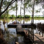 Kinh nghiệm đi khu du lịch sinh thái Phù Sa, Cần Thơ. Hướng dẫn, cẩm nang, review khu du lịch sinh thái Phù Sa, Cần Thơ cụ thể.