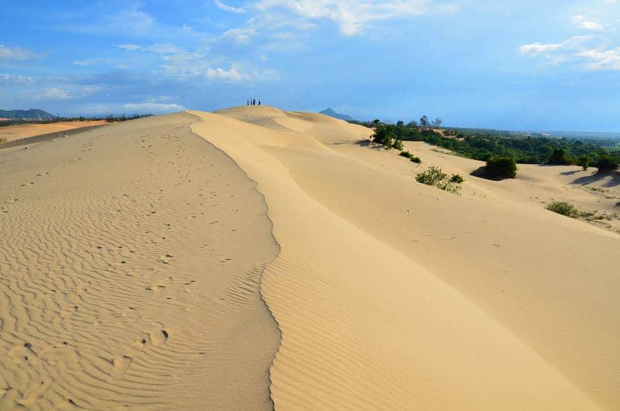 Kinh nghiệm du lịch đồi cát Nam Cương, Ninh Thuận cụ thể. Hướng dẫn cẩm nang phượt đồi cát Nam Cương cụ thể đường đi, thời điểm.