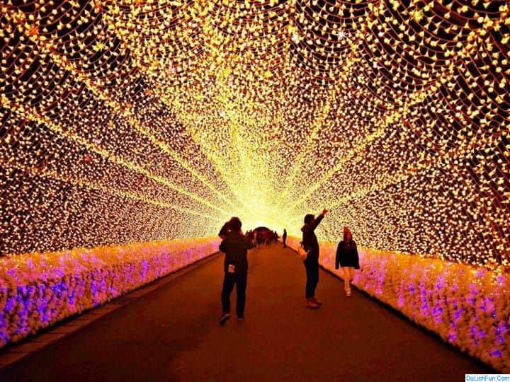 Thông tin chung về cánh đồng hoa Nabana-no-Sato đầy đủ. Hướng dẫn tham quan Nabana no Sato đường đi, giá vé, giờ thắp đèn, mở cửa.
