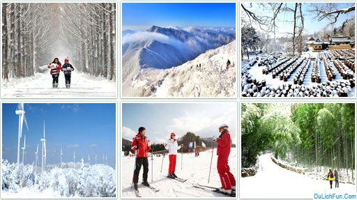 Kinh nghiệm du lịch Hàn Quốc tháng 12 điểm đến tuyệt vời. Hướng dẫn du lịch Hàn Quốc tháng 12 điểm đến đẹp, hoạt động vui chơi...