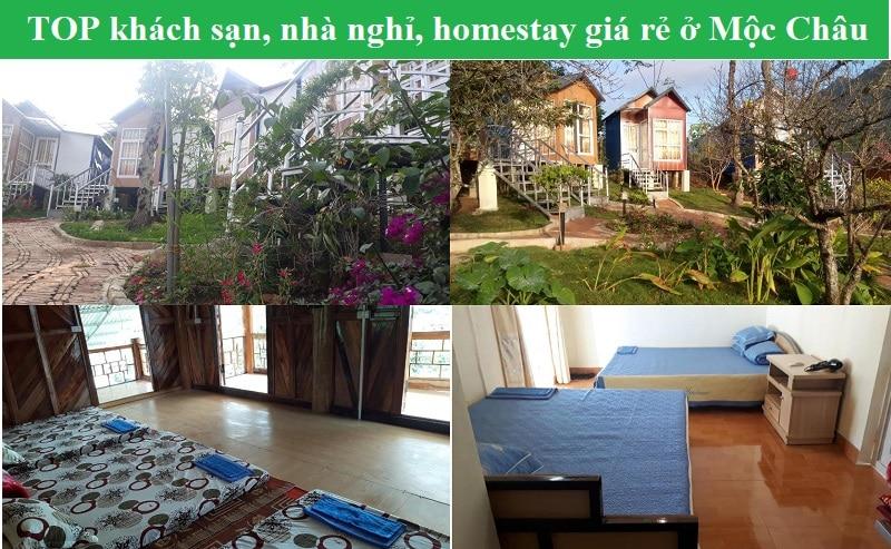 Khách sạn, nhà nghỉ, homestay giá rẻ ở Mộc Châu cho dân phượt