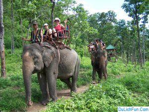 Review khu du lịch vườn quốc gia Yok Đôn chi tiết, cụ thể. Hướng dẫn, cẩm nang du lịch Yok Đôn ăn ở, đường đi, trải nghiệm.