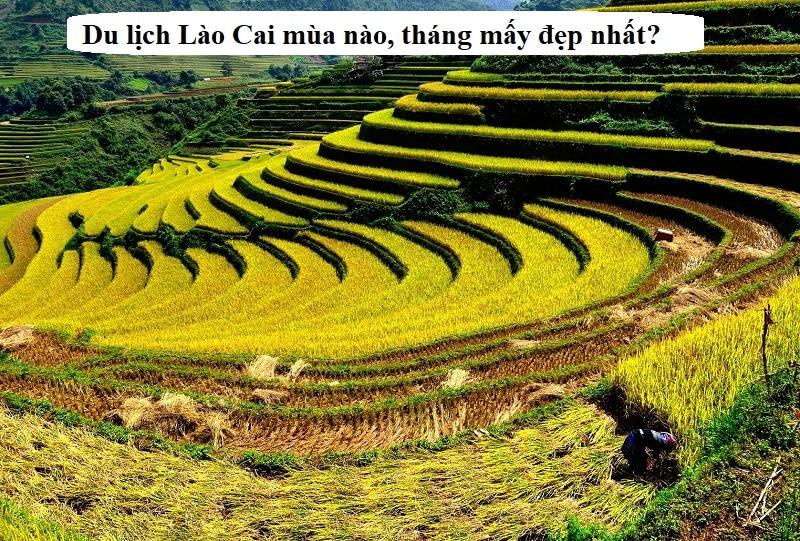 Kinh nghiệm du lịch Lào Cai. Du lịch Lào Cai mùa nào, tháng mấy đẹp nhất?
