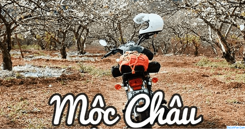 Địa chỉ thuê xe máy ở Mộc Châu uy tín, tốt, giá rẻ. Hướng dẫn, kinh nghiệm thuê xe máy ở Mộc Châu tiện lợi, chất lượng, cập nhật