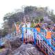 Đảo khỉ, điểm du lịch nổi tiếng ở Nha Trang bạn không nên bỏ lỡ: Hướng dẫn du lịch đảo Khỉ, Nha Trang kèm giá vé