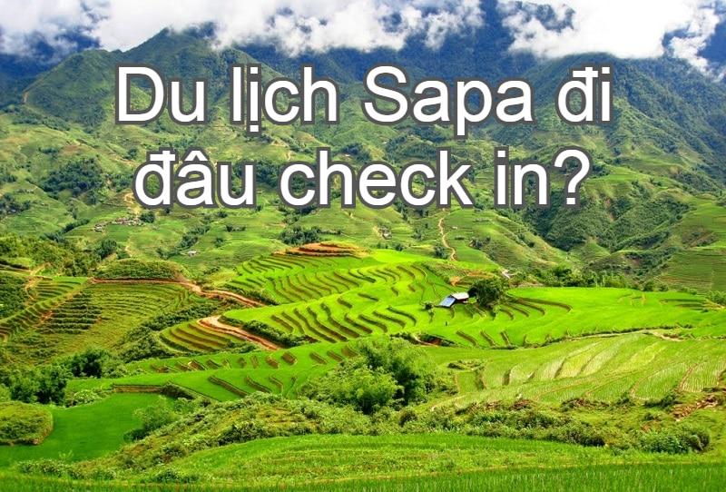 Địa điểm du lịch tại Sapa nên tới. Nên đi đâu chơi ở Sapa? Thung lũng Mường Hoa