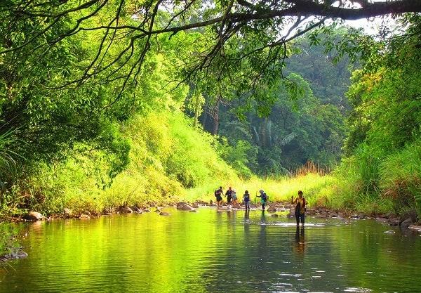 Khám phá du lịch 63 tỉnh thành ở Việt Nam. Địa điểm vui chơi giải trí ở Bình Phước. Vườn quốc gia Bù Gia Mập