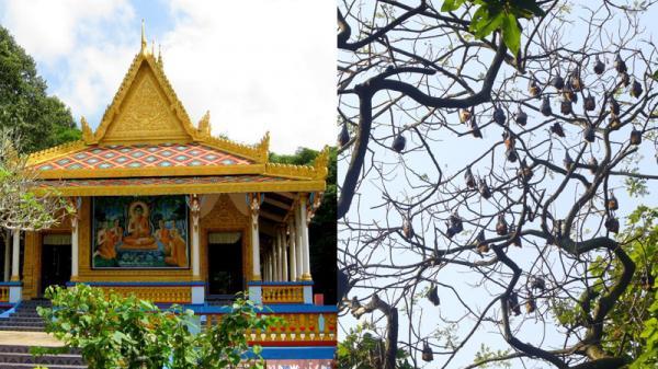 Bản đồ du lịch Việt Nam. Top điểm đến không thể bỏ qua ở Sóc Trăng