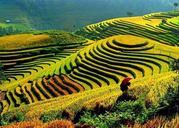 hành trình du lịch 63 tỉnh thành ở Việt Nam. Khám phá Lào Cai
