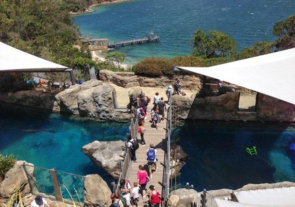 Kinh nghiệm đi vườn thú Taronga Sydney Úc. Vườn thú Taronga Australia ở đâu, có gì, giá vé, giờ mở cửa?