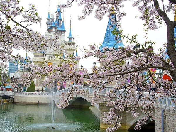 Du lịch Nhật Bản tháng 4 nên đi đâu, chơi gì? Hướng dẫn du lịch Nhật Bản tháng 4