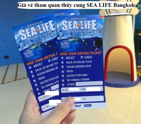Review thủy cung SEA LIFE Bangkok: giá vé, giờ mở cửa, địa chỉ