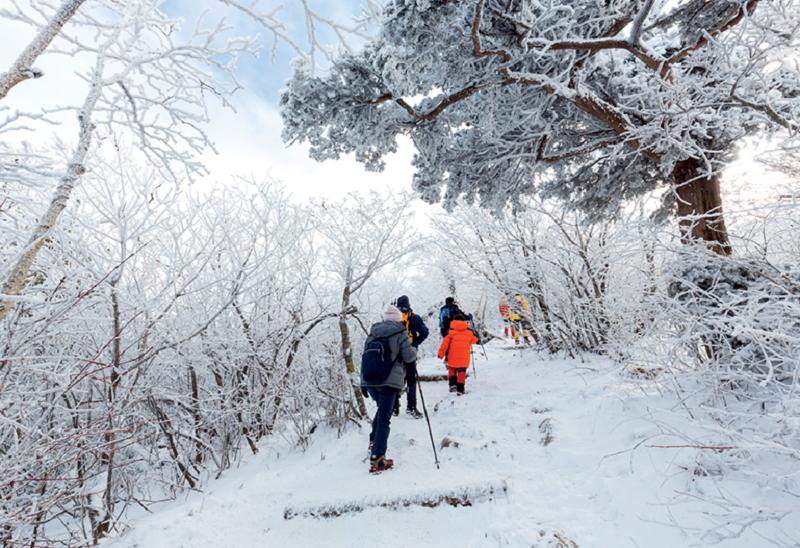 Nên tới Gangwon-do trong thời gian nào đẹp nhất? Thời tiết ở Gangwon-do