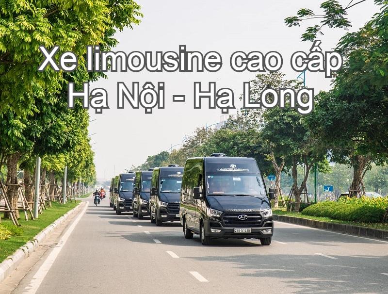 Những hãng xe limousine Hà Nội đi Hạ Long tốt nhất. Hoàng Phú Limousin