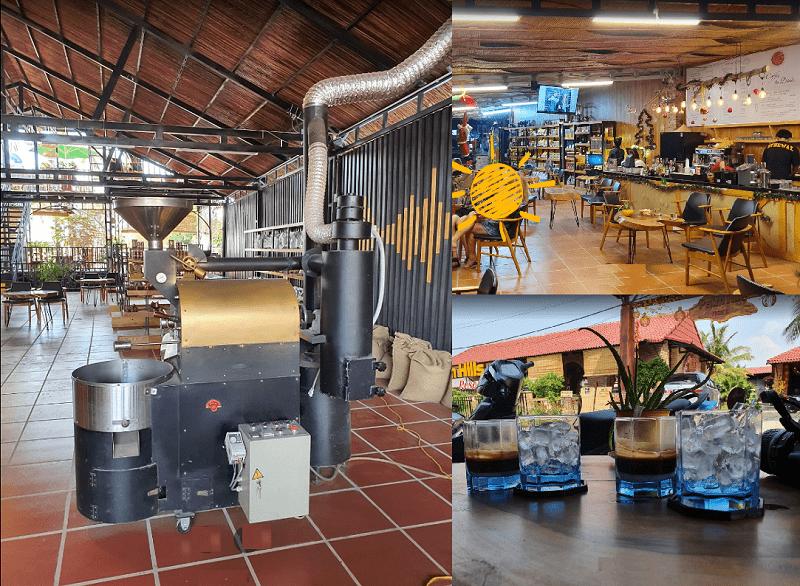 Quán cafe ở Phú Quốc view đẹp. Đi đâu uống cafe ở Phú Quốc? Legend Revived Weasel Coffee